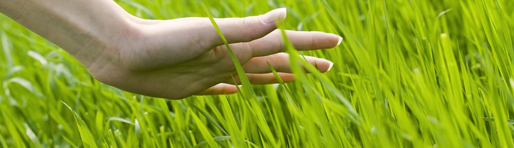 hand_in_grass.jpg